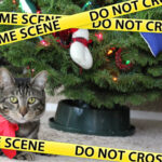 Season's Greetings – Are You a Stressful Holiday Away From Being a Criminal Accused?